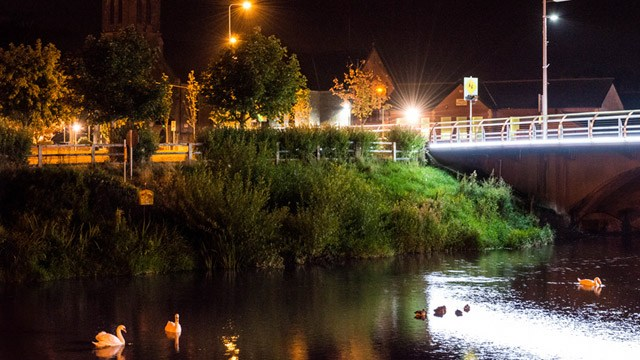 River runs through town at night with swans in view image